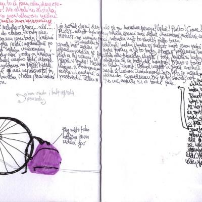 příklad z mého deníku-Nr.2