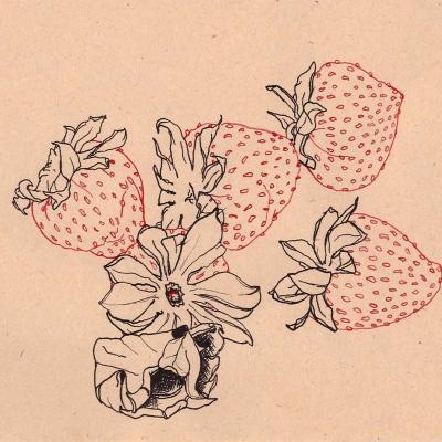 """Tyhle jahody sice nejsou nějakým způsobem """"odřezky"""" ale byla kapánek pozměněna jejich vizáž. Ve skutečnosti byli částečně nazelenalé a chlupaté...ale tak by se přeci nemohli vystavovat."""