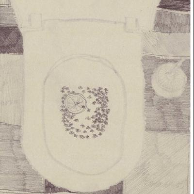aneb co se může skrývat v útrobách vašeho WC